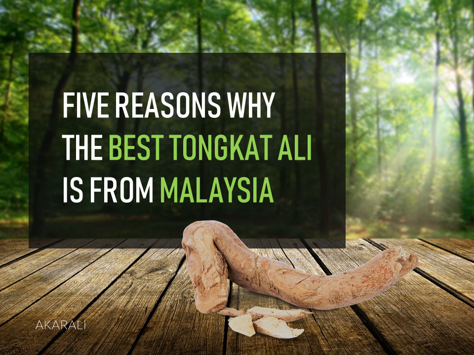 5 Reasons Why The Best Tongkat Ali is from Malaysia.